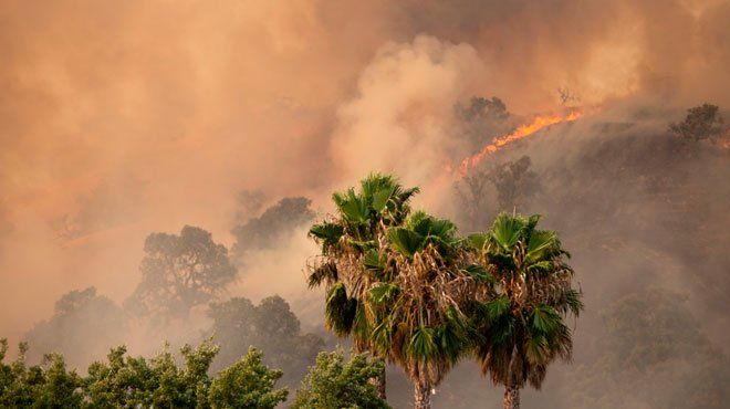 40度の猛暑で「計画停電」に瀕する米カリフォルニア バイデン氏当選の未来か