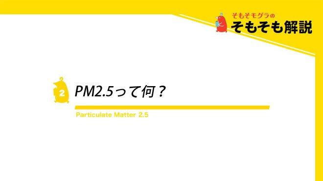 PM2.5って何? - そもそモグラのそもそも解説