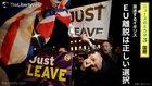 混迷するイギリス EU離脱は正しい選択 - ニュースのミカタ 3