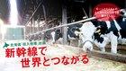 新幹線で世界とつながる 北海道「収入倍増」計画