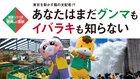 【地域シリーズ】群馬 VS. 茨城 東京を動かす陰の支配者!? あなたはまだグンマもイバラキも知らない