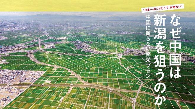 「日本一のコメどころ」が危ない! なぜ中国は新潟を狙うのか - 中国に頼らない繁栄プラン