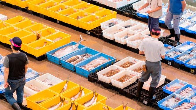 飲食店の取引先にも給付金、農業や漁業者も対象へ ばら撒きはどこまで可能か?