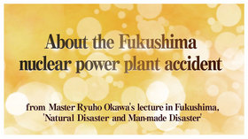 About the Fukushima nuclear power plant accident